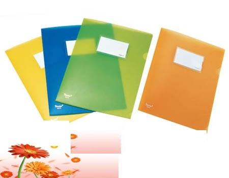 File kẹp tài liệu cứng có Title Shuter A1813