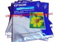 Giấy in ảnh 1 mặt Epson Hoa Cúc A4